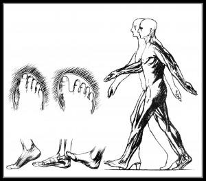 Postura correcta al caminar