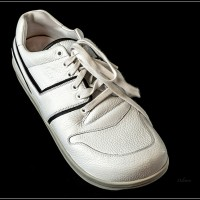 1117 300 Sprin Blanco-4240